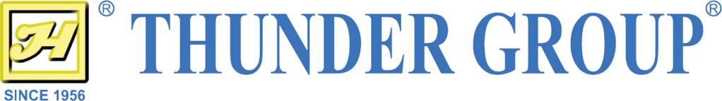 Thunder Group Logo