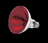 Thunder Group SEJ90001R - Heat Lamp Bulb, 250-watt, Uncoated