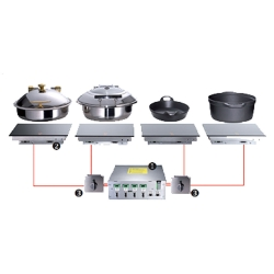 Built-In Induction Generator System