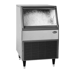 Nugget-Style Ice Maker with Bin